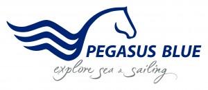Pegasus_Logo.jpg