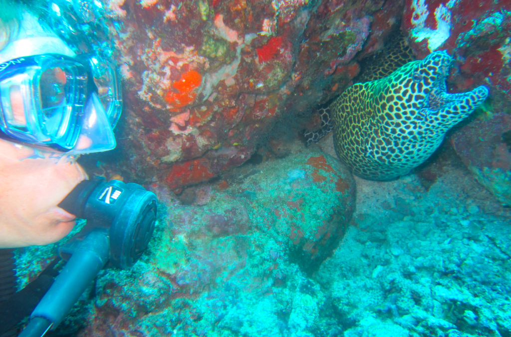 Barbara with Moray eel